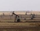 """Syria """"tố"""" Mỹ giúp IS giành quyền kiểm soát mỏ dầu thô"""