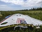 Tình tiết mới vụ máy bay MH17 bị bắn rơi