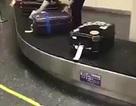 Nhật Bản: Nhân viên sân bay gây sốt khi cẩn thận lau hành lý cho khách