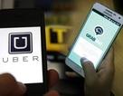 Grab tuyên bố không trả nợ thay Uber khoản 53,3 tỷ đồng truy thu thuế
