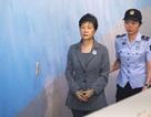 Cựu Tổng thống Hàn Quốc Park Geun-hye đối mặt với 30 năm tù