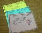 Đà Nẵng: Phạt cán bộ bằng thẻ xanh, thẻ vàng
