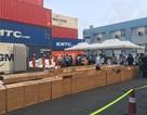 Hai tấn lá Khát cực độc nhập lậu vào Việt Nam qua cảng Hải Phòng