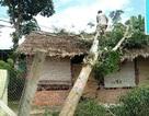 Lốc xoáy trong đêm gây nhiều thiệt hại cho người dân