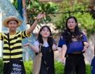 Sài Gòn đẹp mê hồn với mùa chò nâu xoay tít