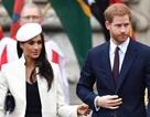 Cô dâu thường dân của Hoàng tử Harry sẽ mang tước vị gì sau đám cưới cổ tích?