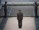 """Đất ở khu phi quân sự đắt như """"tôm tươi"""" sau Hội nghị thượng đỉnh liên Triều"""
