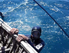 Quảng Ngãi: Ra khơi xem ngư dân lặn bắt ốc kiếm tiền triệu
