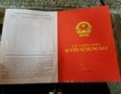 Nhiều uẩn khúc trong vụ bìa đỏ cắm hơn 10 năm bị mất đất tại Thanh Hóa