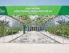 Khám phá nông trường thông minh và hiện đại nhất của Vingroup