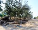 Phú Yên: Đầu tư Công viên ven biển hơn 830 tỷ đồng