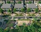 Khu đô thị mở Dương Nội: Miền đất Xanh An Lành, đáng sống phía Tây Nam Thủ đô