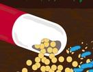 Phát hiện ra cách mà một số vi khuẩn biến thuốc thành... thức ăn