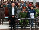 Nguyên Phó Giám đốc Sở Nông nghiệp Hà Nội chuẩn bị hầu tòa lần 2