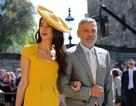 Vợ chồng George Clooney thanh lịch dự đám cưới hoàng gia