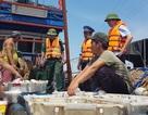 Liên tiếp bắt giữ nhiều tàu giã cào tận diệt hải sản