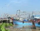 Khắc phục cảnh báo của Ủy ban Châu Âu về chống khai thác hải sản bất hợp pháp