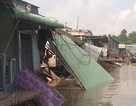 Sạt lở lúc rạng sáng, 5 căn nhà đổ sập xuống sông