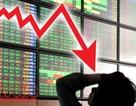 Hoảng loạn tháo chạy, chuyện gì đang diễn ra với thị trường chứng khoán?