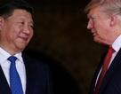 Truyền thông Mỹ hé lộ lý do ông Trump nhượng bộ Trung Quốc