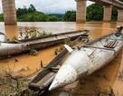 Những quả bom từ thời chiến tranh được người Lào tận dụng trong cuộc sống