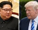 """Động thái """"xuống thang"""" của Mỹ trước thượng đỉnh Trump - Kim"""