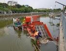 Huy động máy móc vớt hàng tấn cá chết trắng kênh Nhiêu Lộc - Thị Nghè