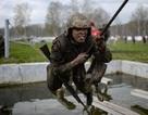 Hành trình gian nan nhận mũ nồi đỏ cao quý của đặc nhiệm Nga