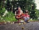 Lạc lối giữa rừng bướm đẹp như tiên cảnh ở Cúc Phương