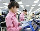 """Năng suất lao động Việt Nam thua Campuchia ở cả """"niềm tự hào xuất khẩu"""""""