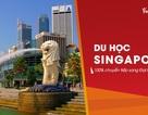 Du học Singapore: Học bổng trăm triệu & Chuyển tiếp 100% sang ĐH TOP tại Úc