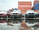 118 container chứa xe BMW vô thừa nhận ở cảng hơn một năm
