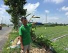 Cần Thơ: Vụ nhà máy tái chế nhôm gây ô nhiễm, Công an vào cuộc!