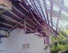 Vụ đất đang ở bị huyện cấp trích lục cho người khác: Kẻ phá nhà vẫn vô can!