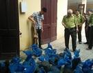 Thanh Hóa bắt giữ vụ vận chuyển tê tê lớn nhất từ trước đến nay