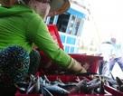 1 đêm đi biển bắt mỏi tay được 3-6 tấn cá nục, lãi từ 40-60 triệu