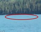 Sinh vật lạ nghi là thủy quái dưới hồ nước sâu ở Trung Quốc