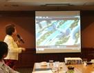 """Thành phố 4 tỷ USD trục Nội Bài-Nhật Tân: Không phải """"đất"""" cho các đại gia bán nhà"""