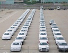 Hình ảnh xe nhập khẩu đỗ thành hàng dài ở cảng Hiệp Phước tại TP HCM