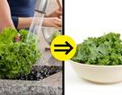 Cần đặc biệt chú ý khi chọn mua và chế biến các loại thực phẩm này!