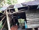 Lốc xoáy tàn phá nhiều nhà dân và làng trái cây Đại Bình