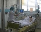 Dịch cúm A/H1N1 hoành hành, nhiều người nguy kịch