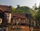 Lốc xoáy càn quét phá hỏng 100 nhà dân