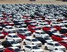 TP.HCM mong thu thêm 4.000 tỷ đồng cho ngân sách nhờ... xe sang