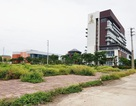 """Hơn 20ha """"đất vàng"""" bỏ hoang giữa thành phố Ninh Bình"""