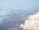 Mối lo nước thải nhà máy giấy gây ô nhiễm môi trường biển