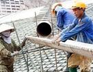 Vì sao năng suất lao động thấp?