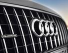 Audi sẽ làm xe Q9 cạnh tranh với Range Rover?