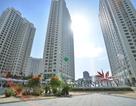An Bình City chính thức bàn giao căn hộ cho khách hàng