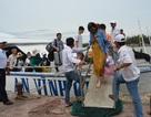 """8 tàu cao tốc """"giải cứu"""" 2.000 du khách mắc kẹt ở Lý Sơn"""